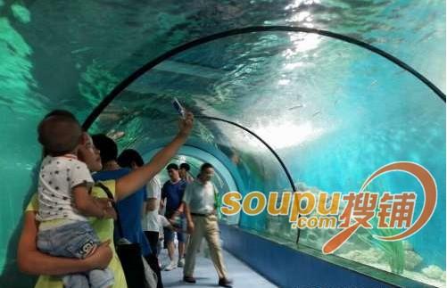 六安海洋大世界22日盛大开业 开启海洋魅力新体验