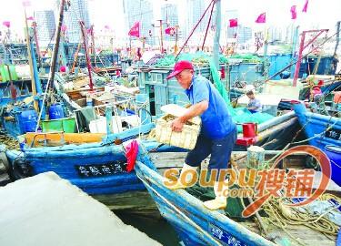 青岛本地海鲜被鱼贩承包转手供给酒店市场暂缺
