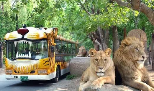 华东地区规模最大的野生动物园将在南京紫清湖生态