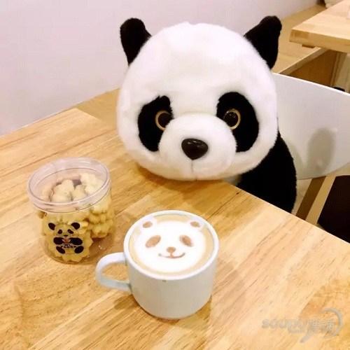 兔斯基,hello kitty,熊猫……上海竟藏了这么多的卡通