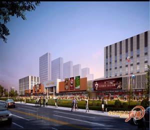 武汉东西湖自贸城